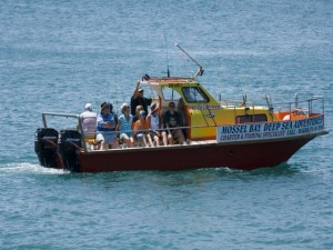 mossel bay deep sea adventures